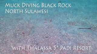 Scuba Diving Black Rock Muck Dive site in Manado Bay, North Sulawesi, Indonesia