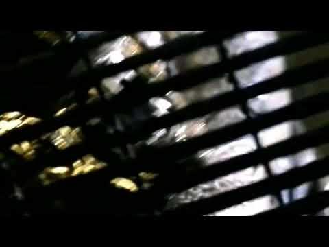 Alien: Resurrection (1997) Trailer Subtitulado
