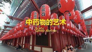 The Art of Chinese Medicine – 中药物的艺术  / Jose Jeuland - Chinatown, Singapore