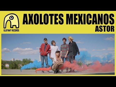 AXOLOTES MEXICANOS - Astor [Official]
