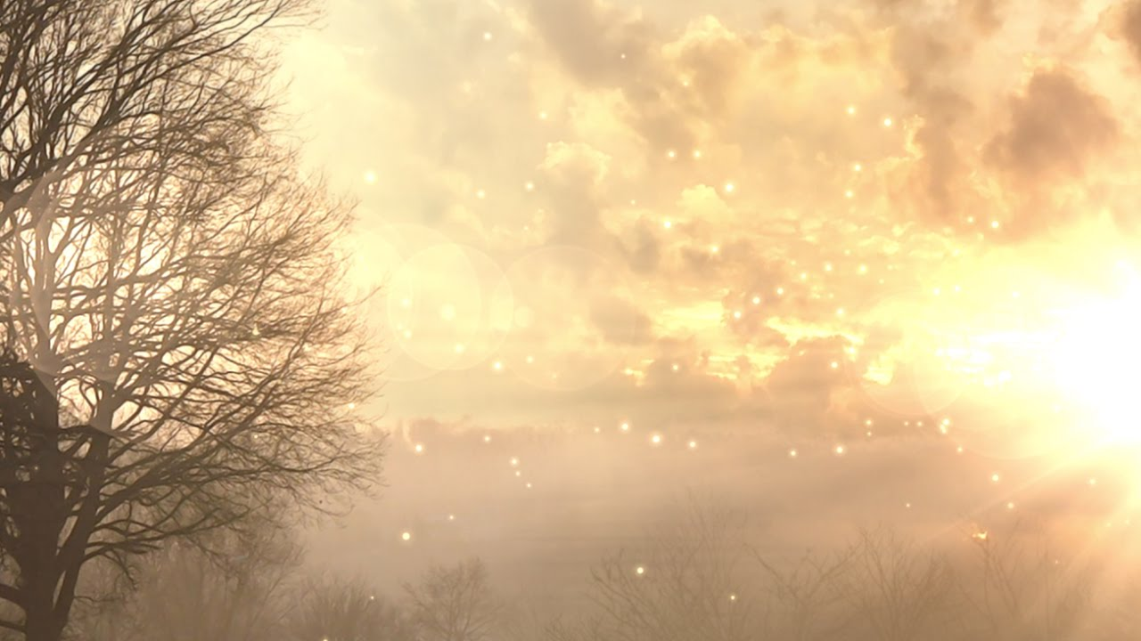 Live Wallpaper Fall Leaves Sunrise Worship Background Loop Motion Graphics Youtube