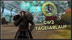 Guild Wars 2 | Mein GW2-Tagesablauf