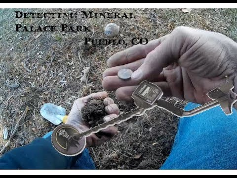 Metal Detecting-Mineral Palace Park