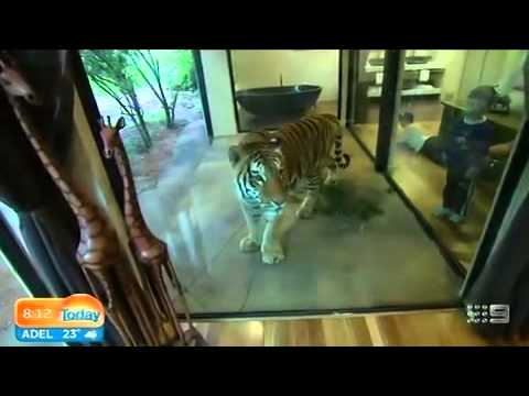 Jamala Wildlife Lodge in Australia doubles as a ZOO