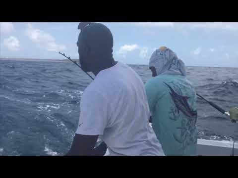 Deep Sea Fishing In Aruba