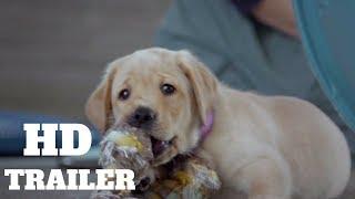 Pick of the Litter Trailer #1 (2018)