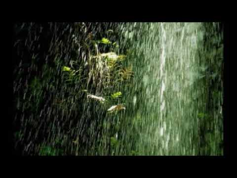 Amazon Rainforest Nature Sounds - Rain Sounds, Birds Chirping, with music (1 hour)