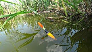 Рыбалка из детства Ловля карася на поплавочную удочку