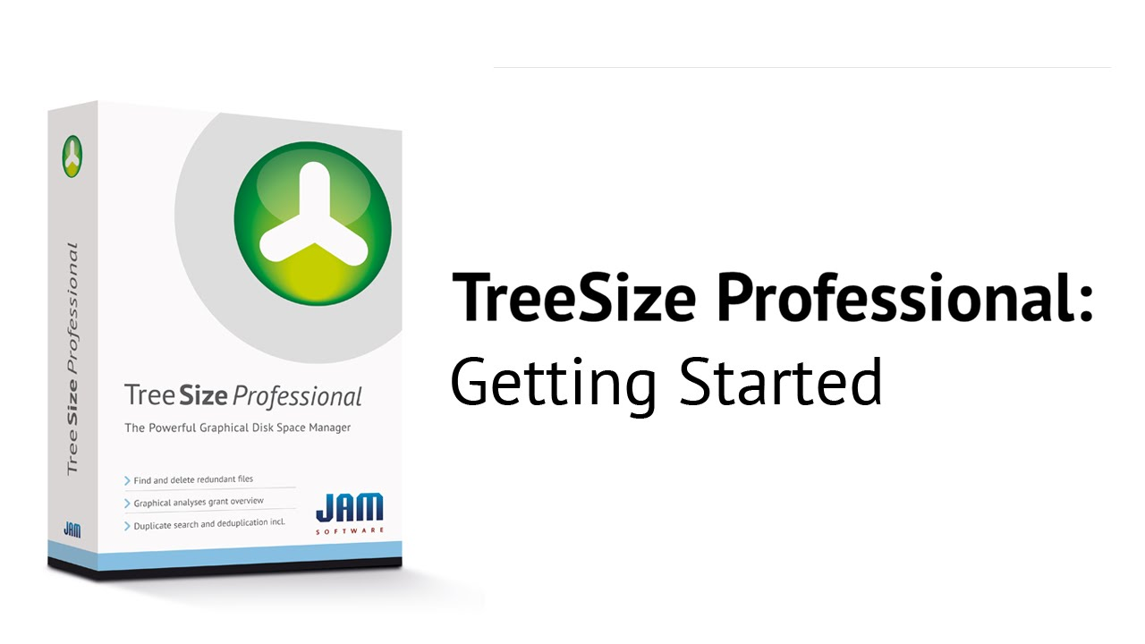 TreeSize Professional 2019 Free Download