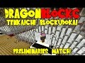 Dragon Block C World Tournament: Tenkaichi Budokai Preliminaries (Dragon Ball Z Minecraft)