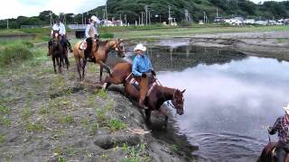 Horse Trail in Abashiri Hokkaido Japan Summer Ver. -No Name Ranch-