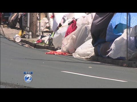 Annual count reveals homeless population decreased in every county but Oahu