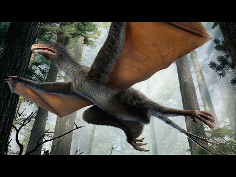 7 Recently Discovered Dinosaurs Species