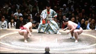 SUMO Jan.Stage 2day 平成29年大相撲初場所 2日目 2017年1月9日.