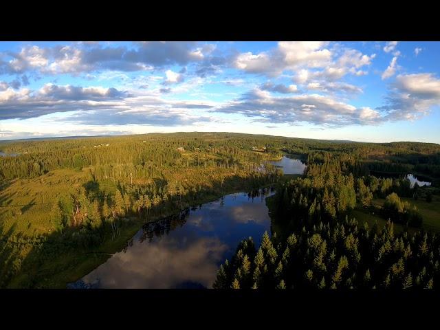 Dji fpv i Värmlands skogar
