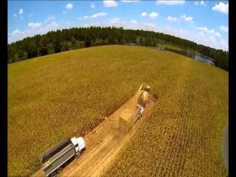 Công nghệ thu hoạch ngô (bắp) ở Hoa Kỳ