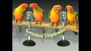 Karaokes Tropicales-Mujer De La Vida