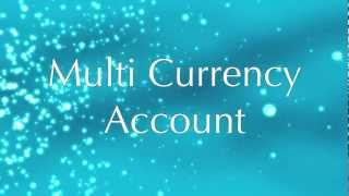 Foreign Currency Account