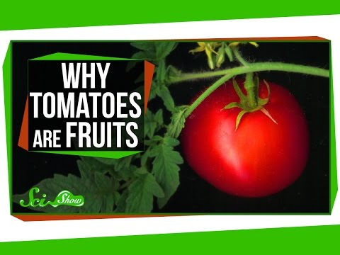 Why Tomatoes Are Fruits, and Strawberries Aren