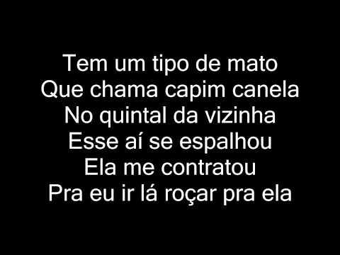MC Pedrinho E MC Brinquedo - Capim Canela letra
