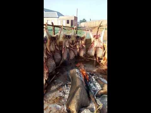 Sallah celebration in Sokoto