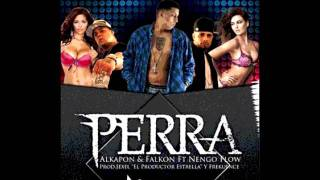 Download Ñengo Flow ft Alkapon y Falkon-Perra letra lyrics MP3 song and Music Video