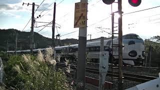 パンダくろしお(287系くろしお)|特急くろしお94号(臨時列車)|20181008