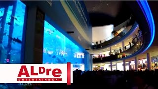 The Dubai Mall, Aquarium, Marina Explorer 2015 [HD]