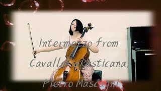 Intermezzo From Cavalleria Rusticana, Pietro Mascagni Zenith-Juhye Cello 카발레리아 루스티카나 간주곡 첼로 황주혜