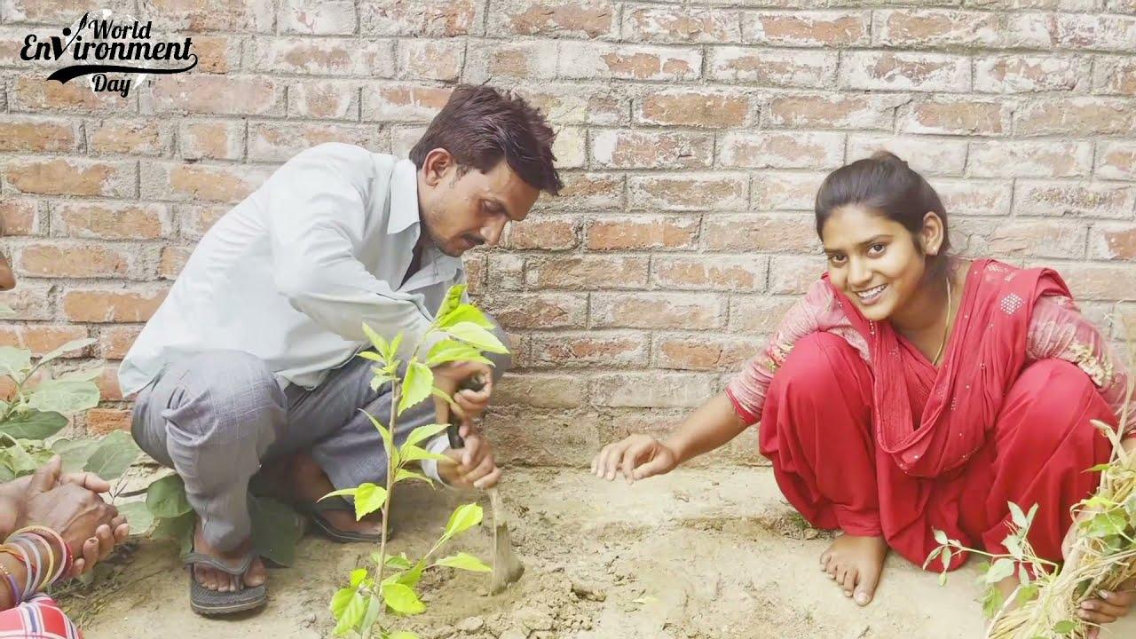 Celebrate world Environment day || आओ मिलकर पेड़ लगाएं - Shivani kumari