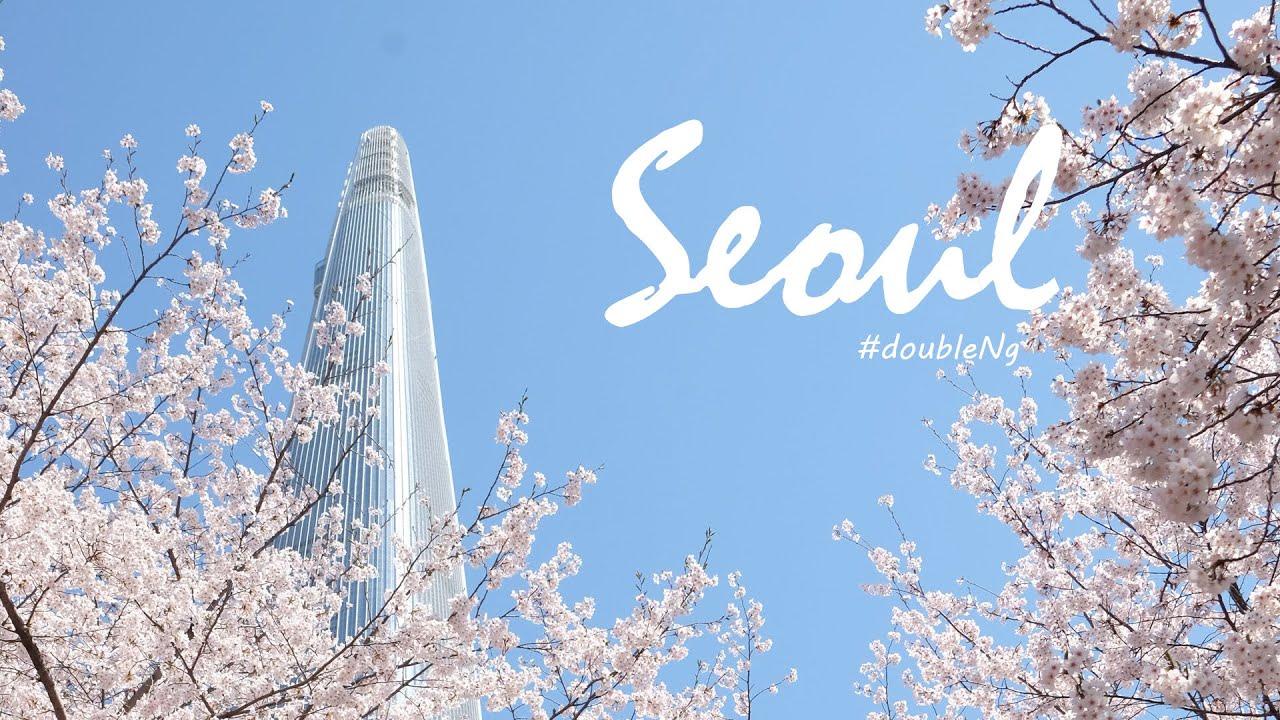 MÙA HOA ANH ĐÀO Ở SEOUL HÀN QUỐC