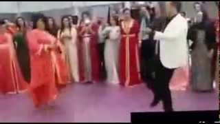 رقصة الحصان للحاج عبد المغيث