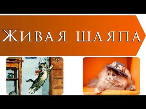 Николай Носов читать рассказы и книги Лабиринт