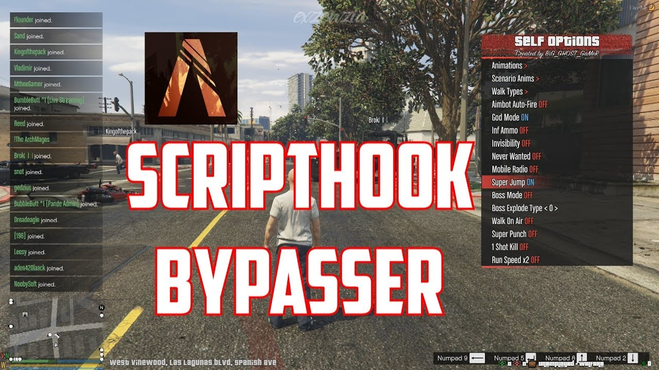 FiveM Scripthook Bypasser & LUA Executer | Money&Admin Hack for every  Server + Modmenus (UNDETECTED)