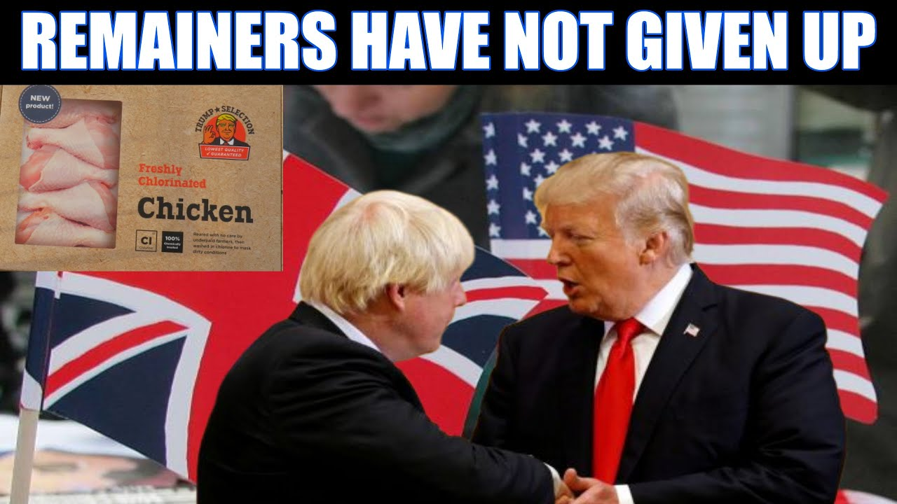 Remainers Crawl Back Out Of The Sewers To Stop Post Brexit UK-US Trade Deal