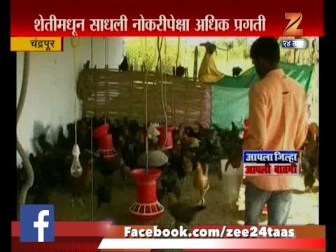 Chandrapur | Farmer | Became Successful After Mix Farming