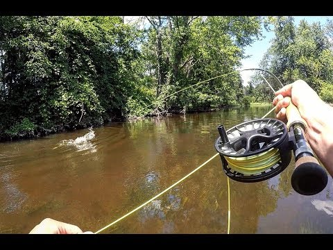 Fly Fishing Small Streams For Pike And Smallies