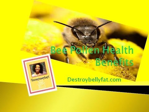 pollen-benefits---bee-pollen-health-benefits---royal-jelly-from-bees