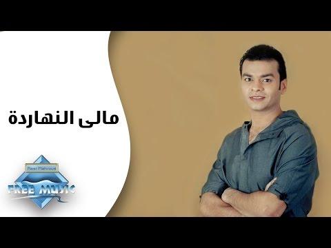 Mohamed Mohie - Malie El Nahardah | محمد محى -  مالى النهارده