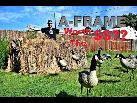 Is the AVIAN X A-FRAME BLIND Worth the MONEY$$??