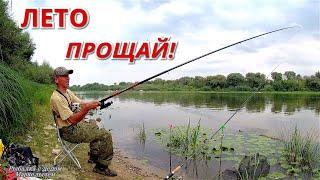 ПРОЩАЙ ЛЕТО Рыбалка на ПШЕНИЦУ и ДОНКУ ОКА 2021