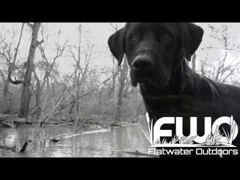 Duck Hunting East Texas: The Big Flood