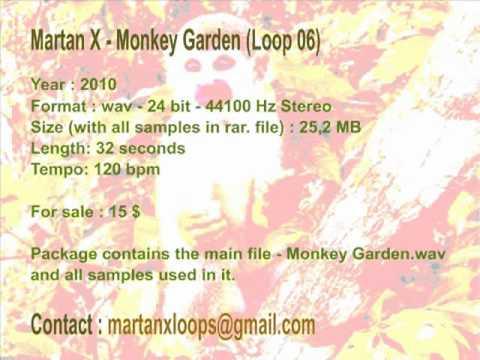 Martan X - Loops Pack 01