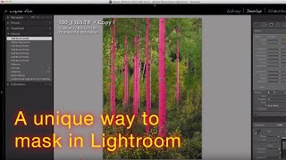 A unique way to use Lightrooms Automask feature