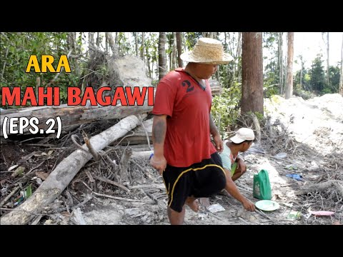 ARA MAHI BAGAWI EPS. 2