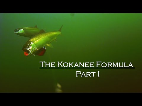 How To Catch Kokanee: The Kokanee Formula Part 1
