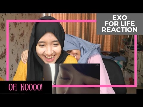 EXO - For Life // MV Reaction (Indonesia)
