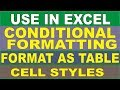 Use Conditional Formatting, Format as Table and Cell Style in Excel? [Hindi]