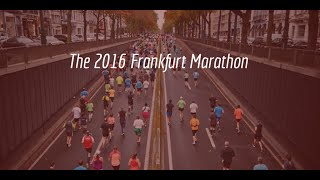 Frankfurt Marathon Facts