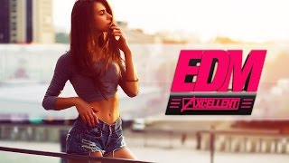 Best Electro House & Dance Chart Mix 2015 by DJ Λxcellent [EP.076]